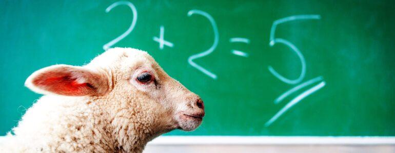 2+2=5 lamb